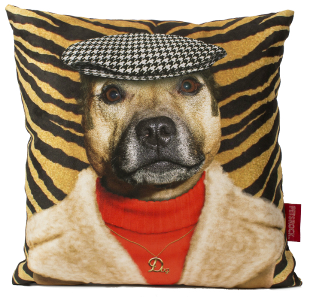 Dog Boy Cushion, GettingPersonal.co.uk £26.99