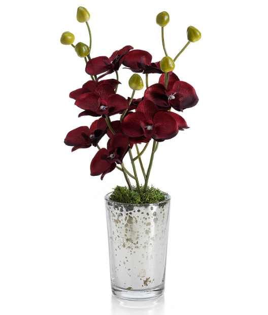 Mini Orchid in Mercury Glass (Was £9.60) Now £12.00