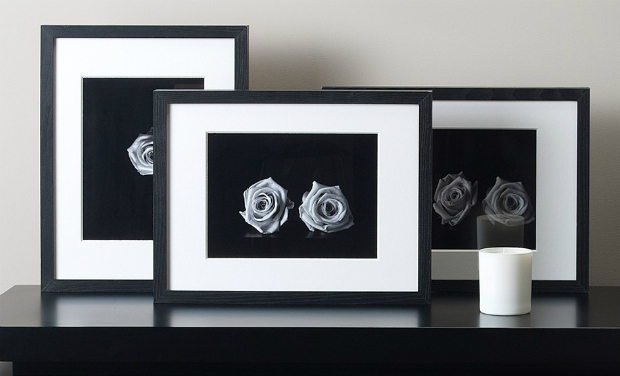 Rose II Picture, Kelly Hoppen Home £65.00