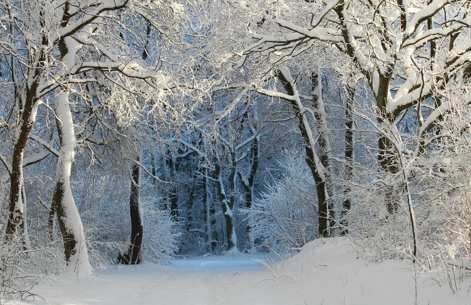 winter-343512_960_720