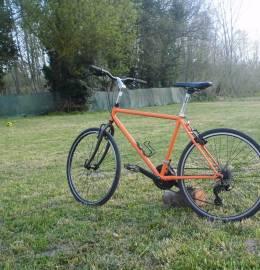 BIcicleta citadina