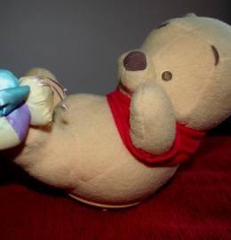 Winnie the pooh que ri