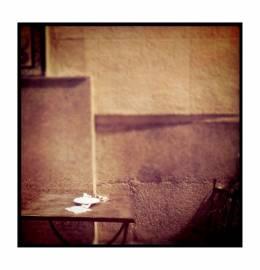 Fotografia - Francisco Feio