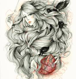 Ilustração -
