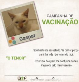 Vacinação Gaspar