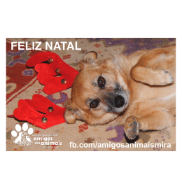 Iman para frigorifico- NATAL 04