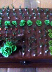 Artesanato Solidário caixa com horta em Biscuit