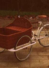 Cargo bike com cesto em verga