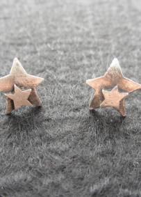 Brincos Pequenos em Prata