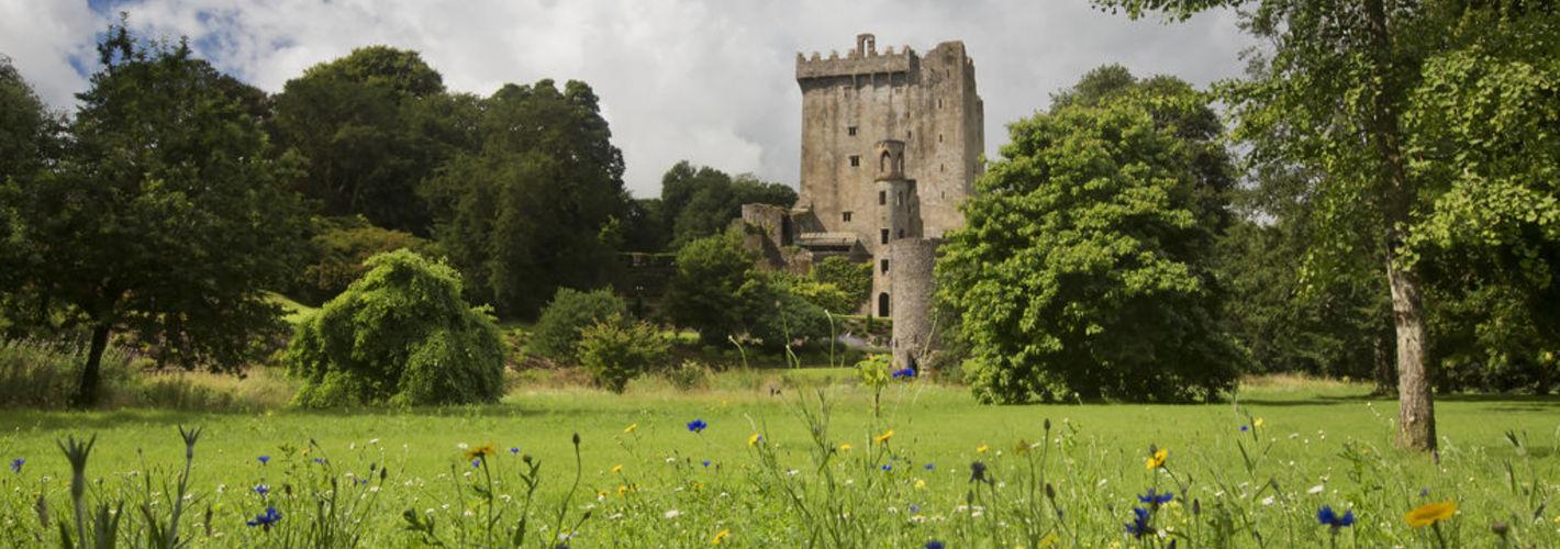 Cork, Blarney e Cashel