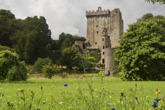 Cork, Blarney e Cashel da Dublino
