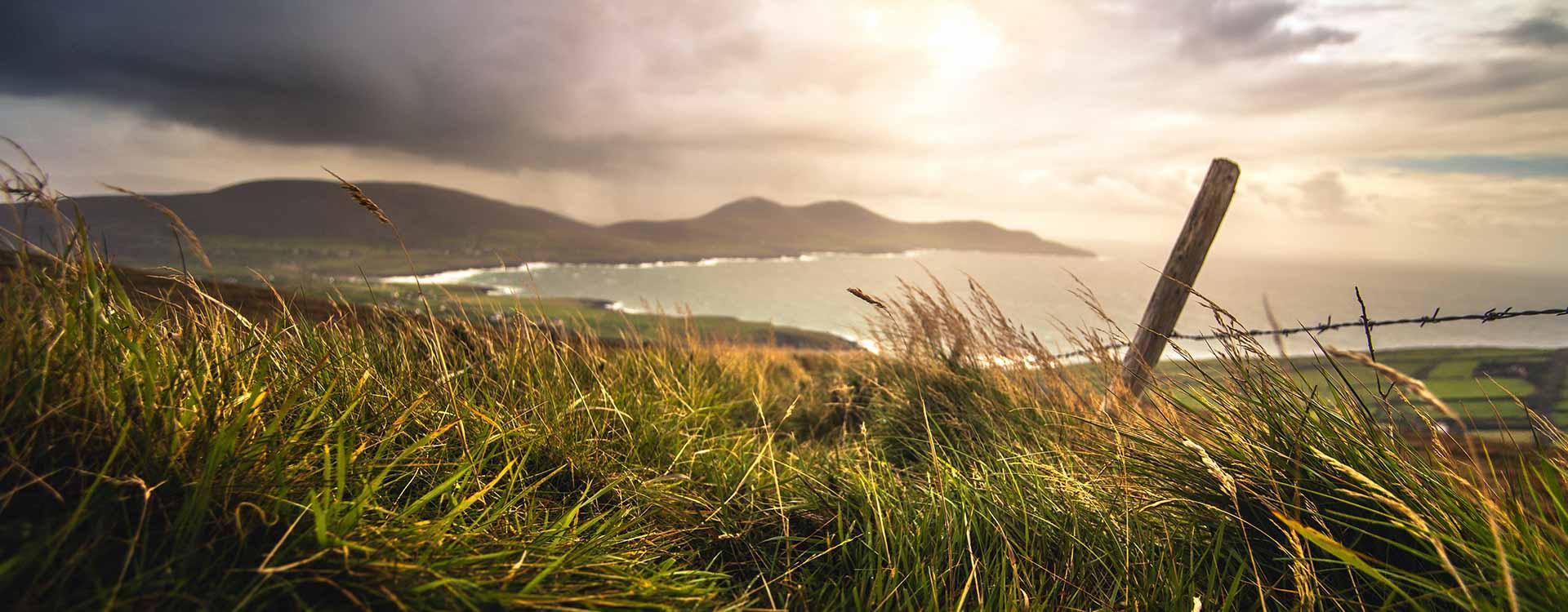 Tour di 6 giorni dell'Irlanda del Sud