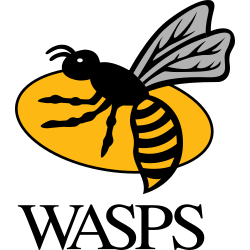 Wasps V Sale Sharks