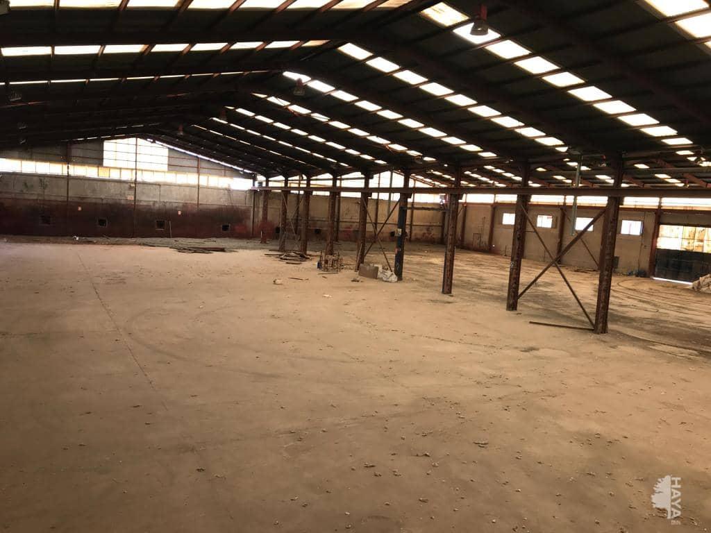 Industrial en venta en Industrial en Santomera, Murcia, 567.963 €, 4694 m2