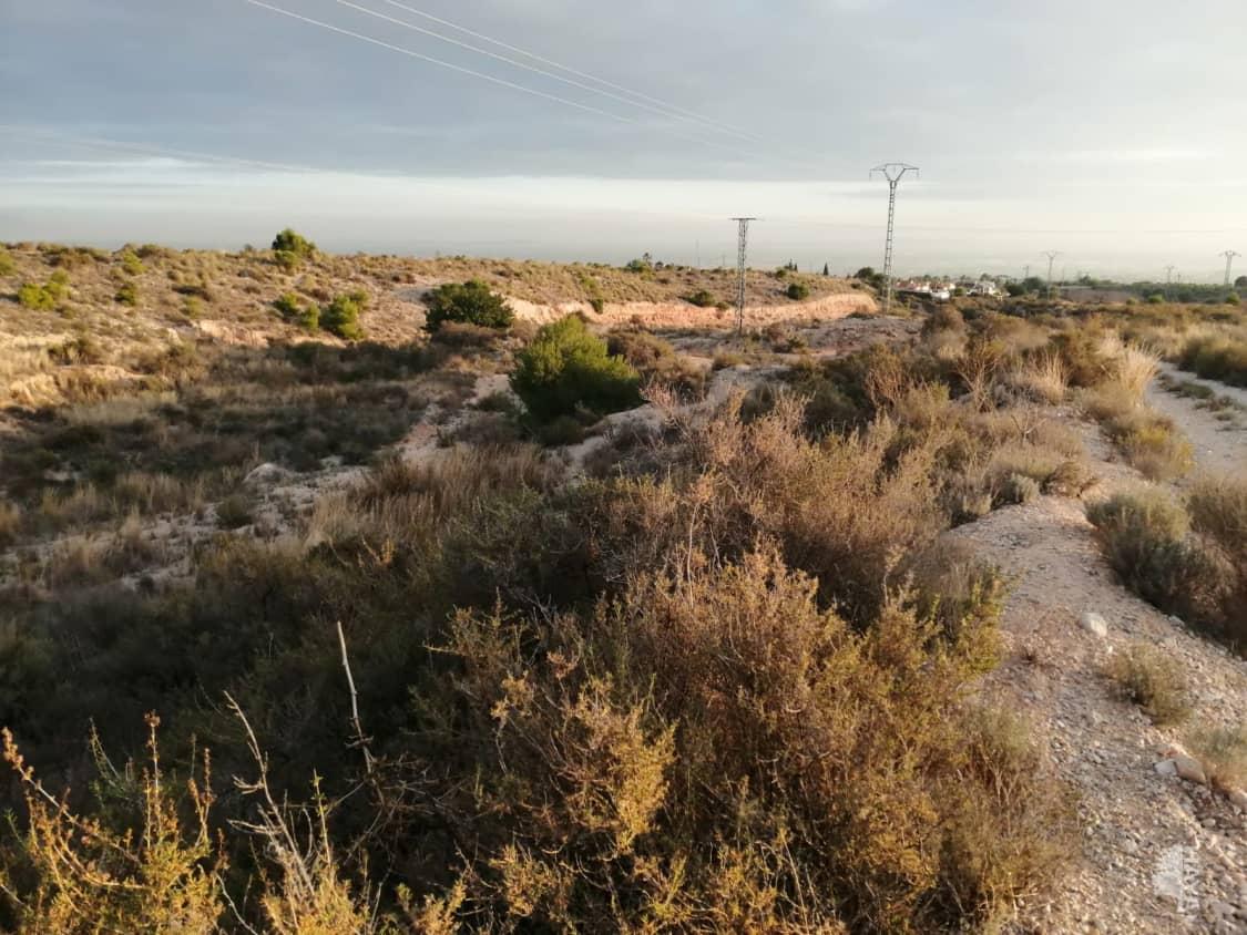 Suelo en venta en Colonia Ilicitana, Albatera, Alicante, Calle Cinco-el Moco, 182.070 €, 36417 m2