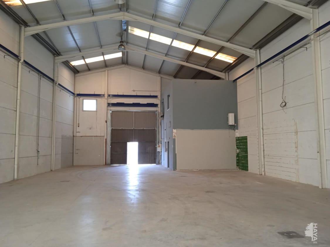 Industrial en venta en Alquerieta, Alzira, Valencia, Calle Professor Gual Camarena, Baj, 110.200 €, 355 m2