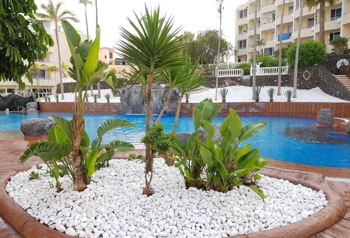 Piso en venta en Piso en San Miguel de Abona, Santa Cruz de Tenerife, 95.500 €, 1 habitación, 1 baño, 36 m2