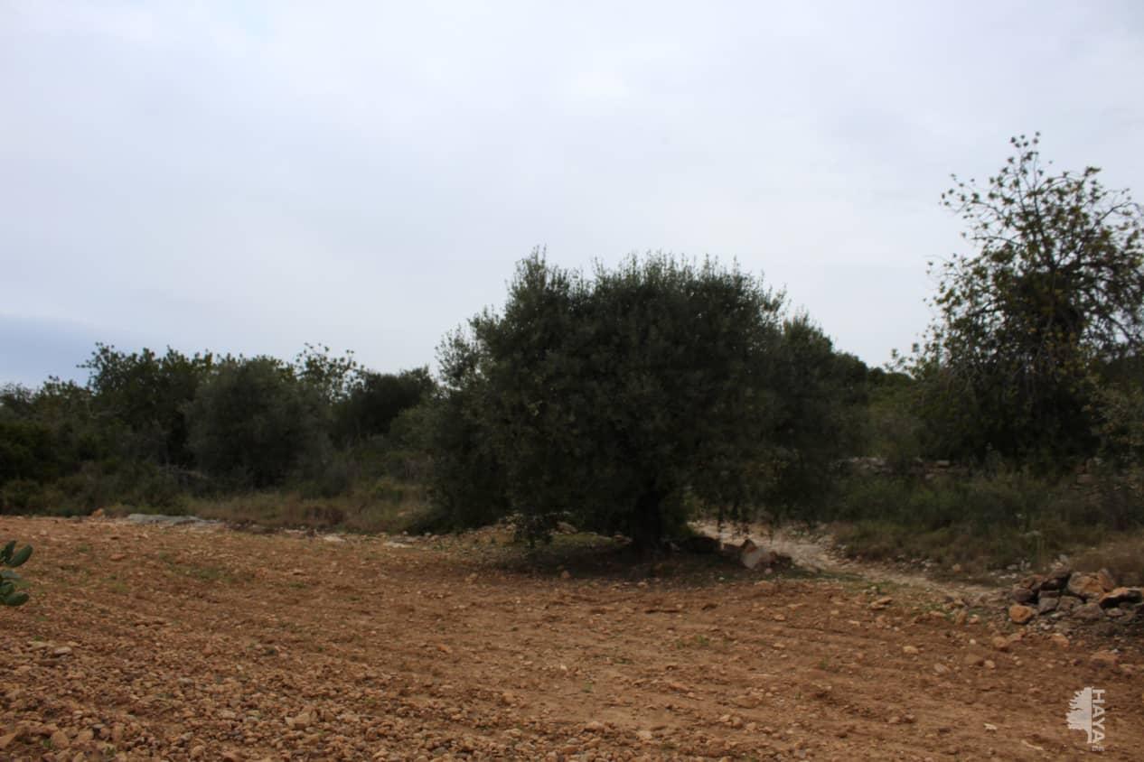Suelo en venta en Casa Gatell, Altafulla, Tarragona, Calle Esplanes (les), 85.900 €, 60400 m2