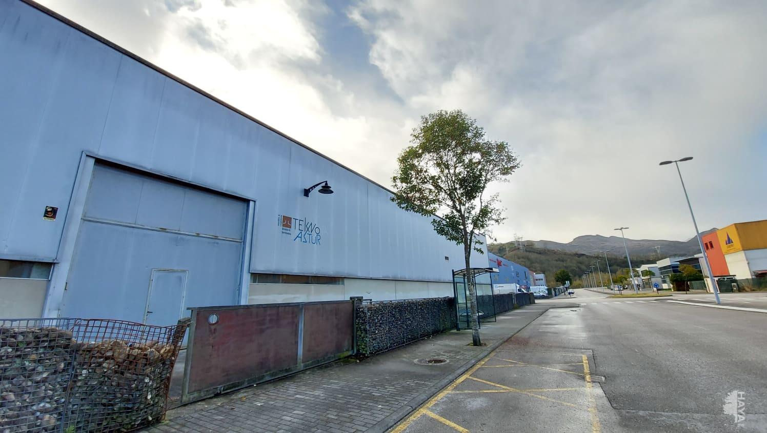 Industrial en venta en Oviedo, Asturias, Calle Industrial Olloniego, 453.000 €, 1319 m2