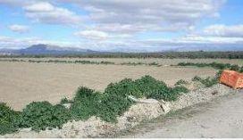 Suelo en venta en Suelo en Lorca, Murcia, 45.000 €, 15649 m2