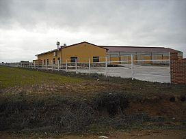 Suelo en venta en Suelo en Castrillo de la Guareña, Zamora, 27.800 €, 25594 m2