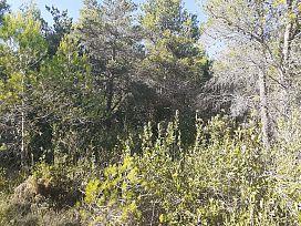 Suelo en venta en Suelo en Mont-ral, Tarragona, 69.300 €, 2387 m2