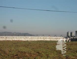 Industrial en venta en Industrial en Alange, Badajoz, 150.776 €, 1492 m2