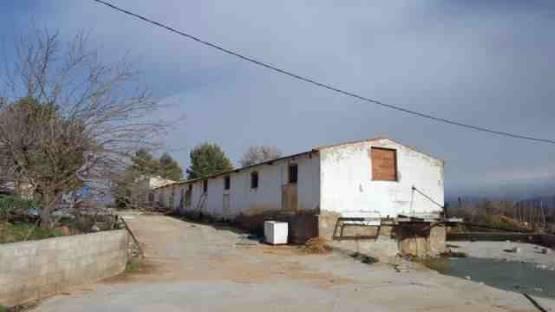 Industrial en venta en Fuentealbilla, Fuentealbilla, Albacete, Paseo Tejares, 132.000 €, 837 m2