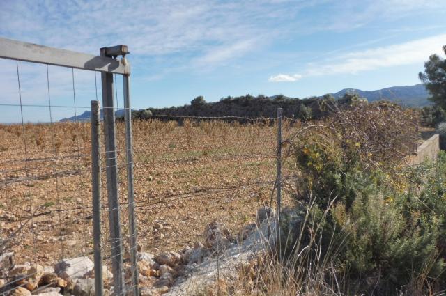 Suelo en venta en Suelo en Pego, Alicante, 237.000 €, 347434 m2