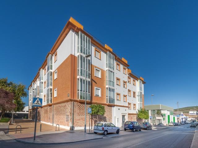Piso en venta en Las Vegas, Lucena, Córdoba, Calle Camino la Fontanillas, 69.700 €, 2 habitaciones, 1 baño, 116 m2