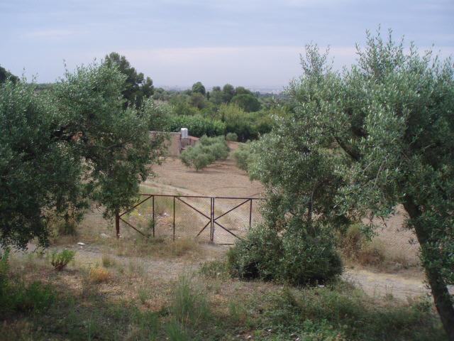 Suelo en venta en Suelo en Reus, Tarragona, 48.500 €, 1700 m2