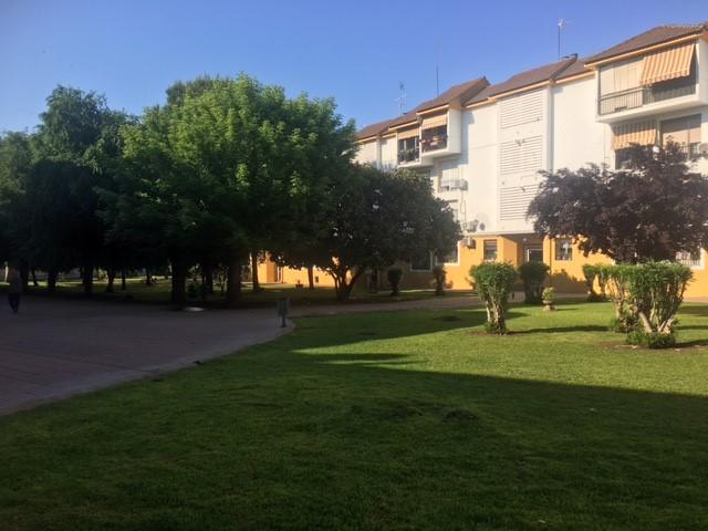 Piso en venta en Piso en Córdoba, Córdoba, 111.000 €, 3 habitaciones, 2 baños, 101 m2