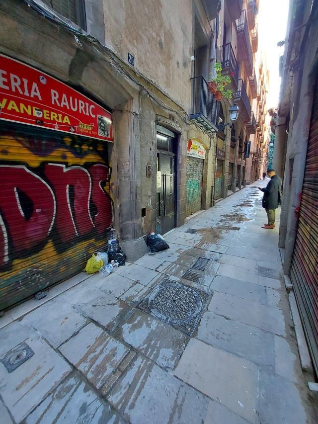 Piso en venta en Ciutat Vella, Barcelona, Barcelona, Calle Rauric, 490.000 €, 1 habitación, 1 baño, 46 m2