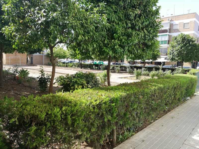 Piso en venta en Piso en Utrera, Sevilla, 91.000 €, 3 habitaciones, 1 baño, 79 m2