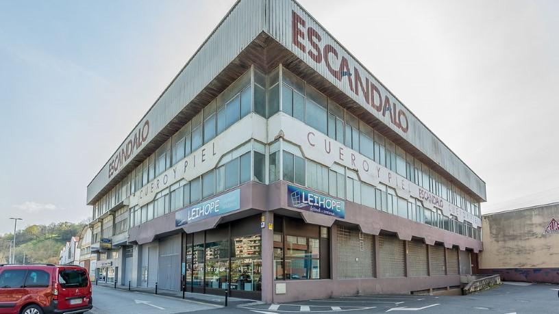 Industrial en venta en Amaroz, Tolosa, Guipúzcoa, Calle Amaroz, 357.800 €, 999 m2