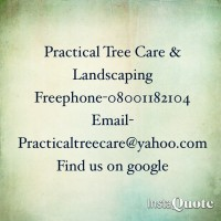Practical tree care & landscapes