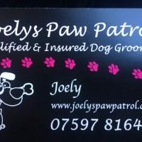 Joely's Paw Patrol