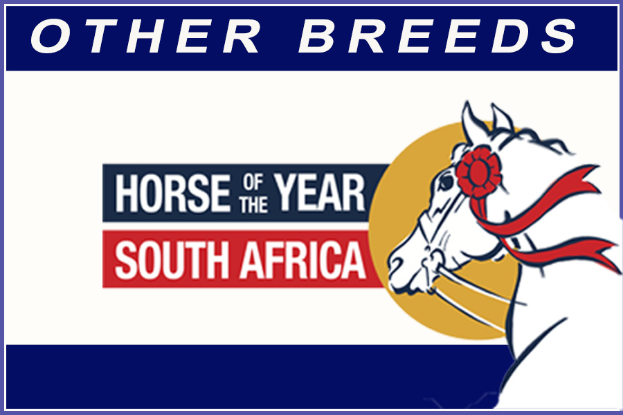 Horse of the Year 2020 - Other Breeds