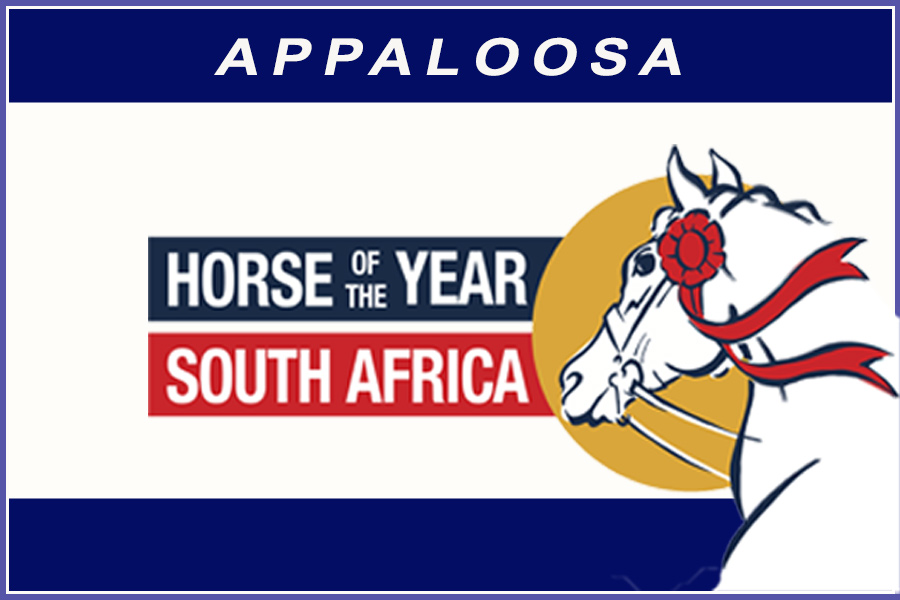 Horse of the Year 2020 - Appaloos