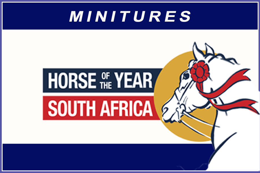Horse of the Year 2020 - Miniatures