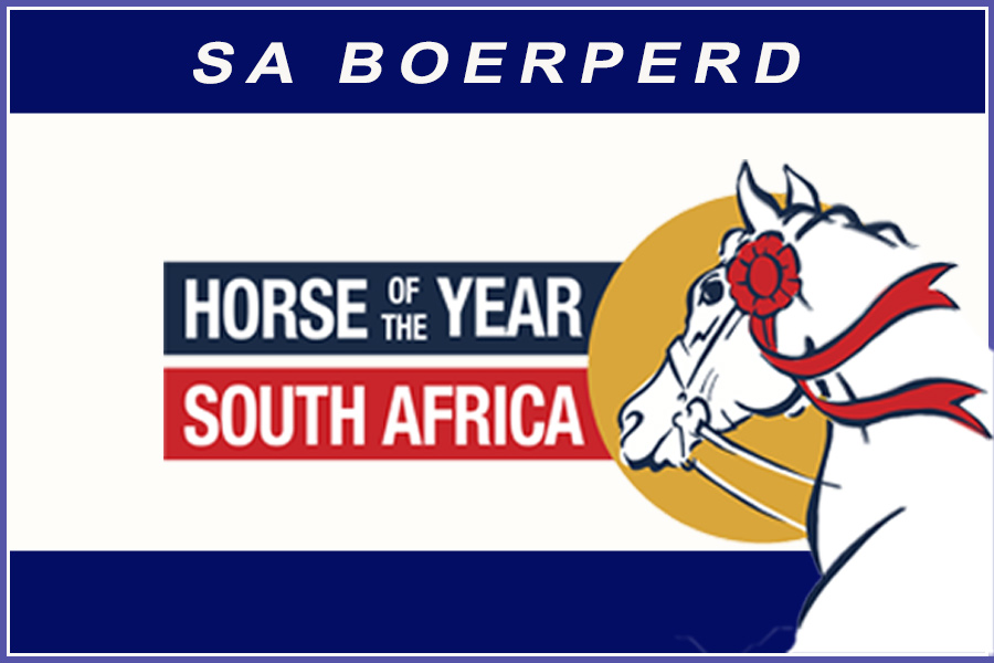 Horse of the Year 2020 - SA Boerperd
