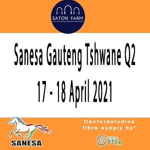 Sanesa Gauteng Tshwane Q2 17 - 18 April 2021| High School Working Riding