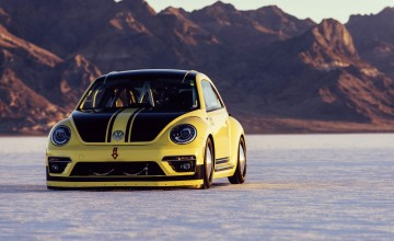 VW Beetle hits record speed in USA