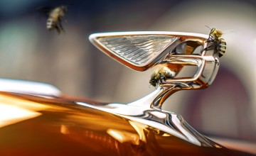 Bentley sets out electric plans
