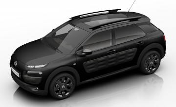 Special C4 Cactus in the black