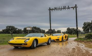 Lamborghini raging bull back to roots