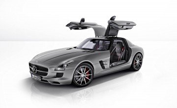 Gull-wing glory from Benz boys