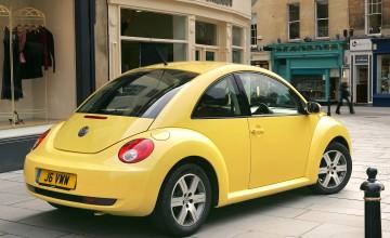 Beetle fun but flawed