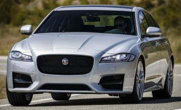 Jaguar XF puts cat among Euro pigeons