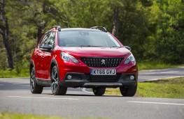 Peugeot 2008, 66 registration plate, front, action